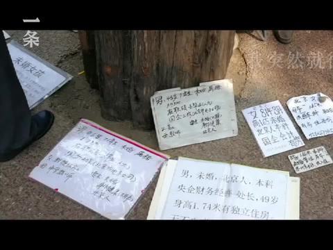 五个中国女性的相亲实录