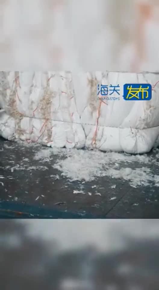 """鸭毛也可能是""""洋垃圾""""!宁波海关查获35.22吨""""水洗白鸭毛"""""""