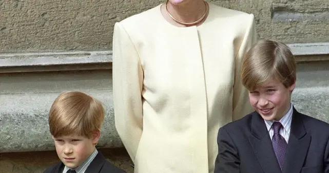 知名专家爆料:威廉强硬面对哈里夫妇,拒绝梅根参加戴妃纪念仪式