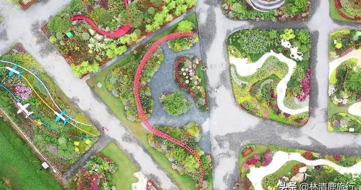 郑州新打造的免费网红地:55个主题花卉展,变身为梦幻花园