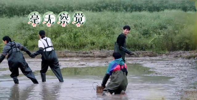 《向往的生活5》何炅等人抓泥鳅,张艺兴害怕,想出妙招应对