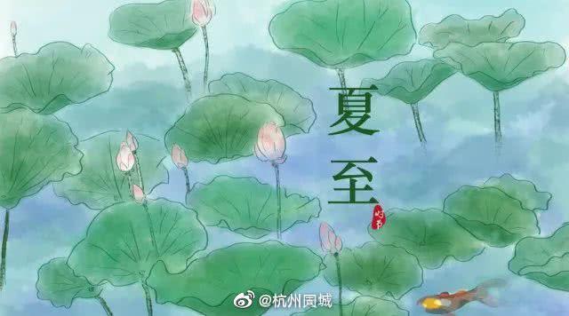 杭州梅雨间隙的好天气来了 全杭州的洗衣机准备开始工作!