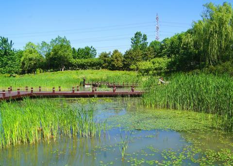 """北京有个""""任性""""的公园,每周只开放三天,想要去只能抢票"""