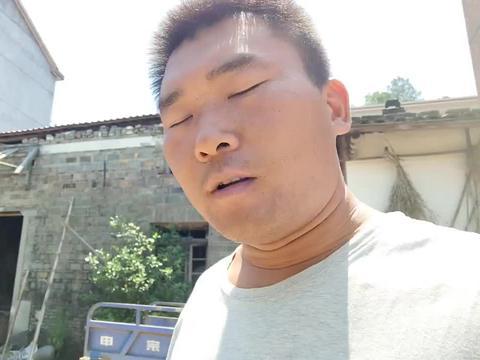胖哥在外面做事回家,看到老妈摘了几十斤杨梅,又可以泡酒喝