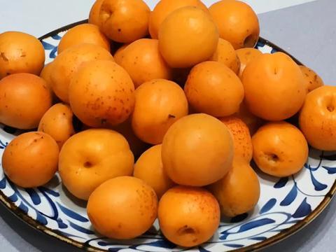 6月,此碱性水果正当季,营养极高,1元1斤吃得起,爽口又开胃