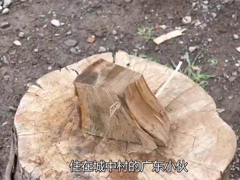 """广东""""拆迁户""""在村里开餐馆,每天用木柴炖鸡块,一个月能赚40万"""