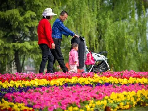 一座城市的绿色崛起——咸阳市创建国家森林城市工作纪实