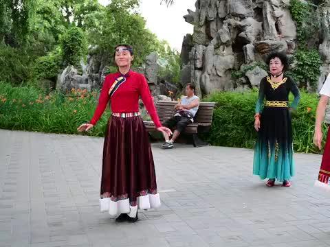 乐羽老师领舞《盛情雪域》舞姿优雅,韵味十足
