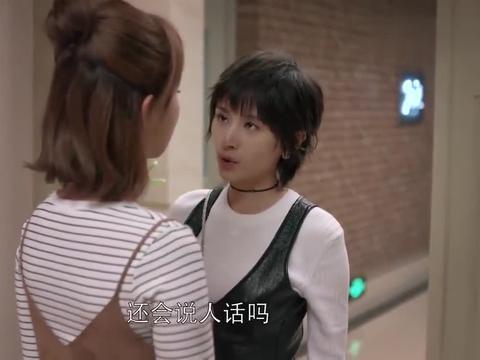 欢乐颂杨紫一开门,就喷曲筱绡一脸口水,姐妹俩对话太逗了