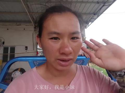 小妹几天卸货,爬树采摘荔枝,卖了五百多块钱,罗丹帮忙拍摄视频