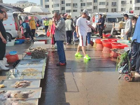 """青岛""""一秒入夏""""最高气温35℃,街头小海鲜多样新鲜,蛎虾15一斤"""