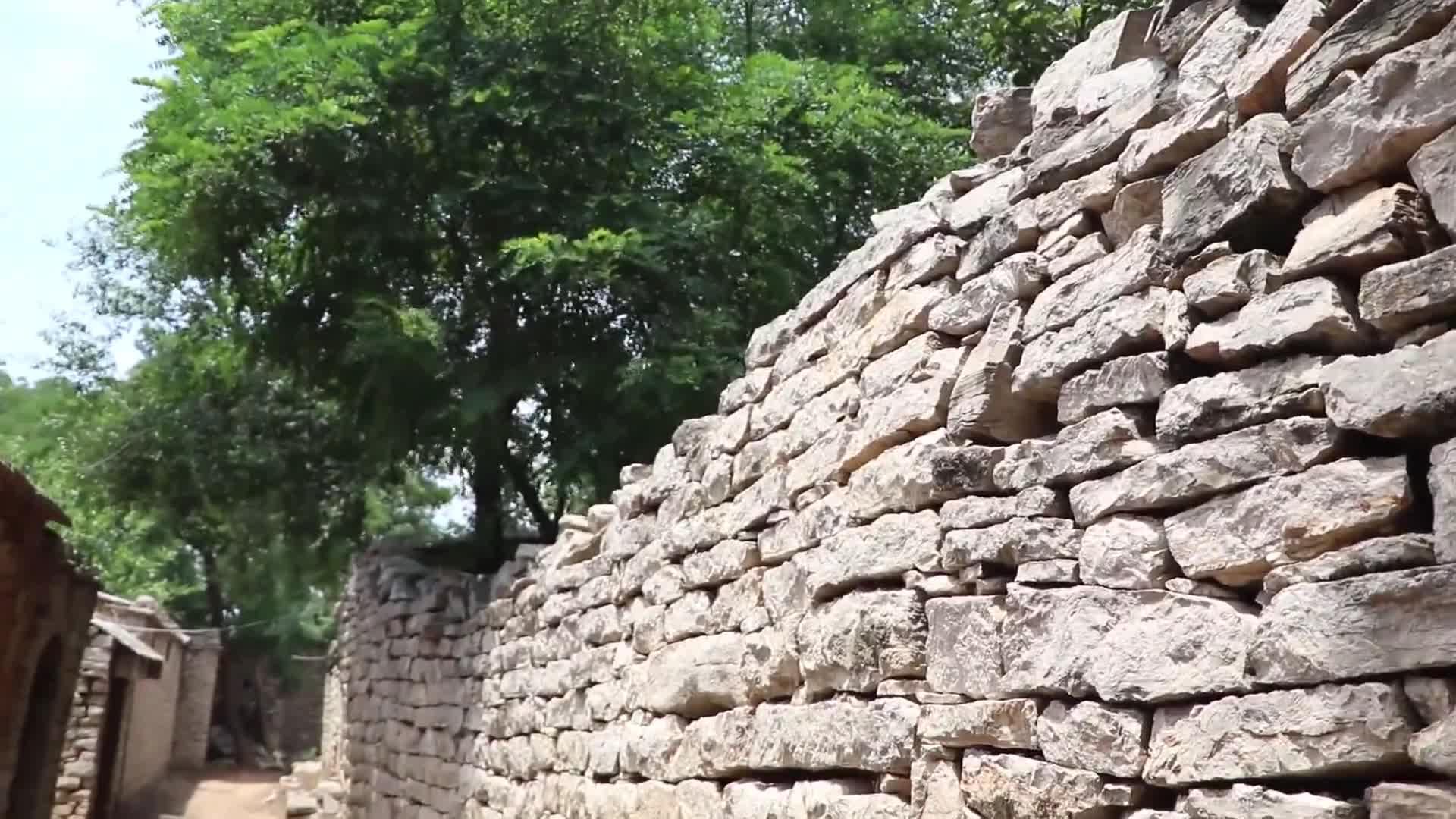 天天学党史·走黄河|泰安站①小小村庄成八路军后方医院