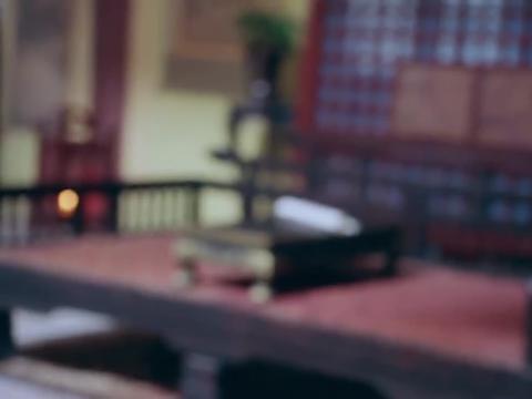 大唐荣耀:何灵依说果然,沈珍珠一听到沈安的事情,就会自投罗网