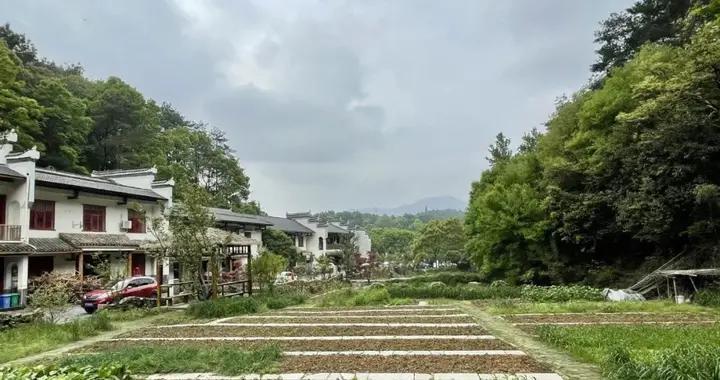 播报   选拔优秀年轻干部进入乡镇班子,湖南省长沙市35岁以下乡镇领导班子成员逾三成