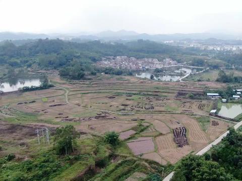 广东高要里的这个农村,前有水塘后山脉环抱,老先生看了说不得了