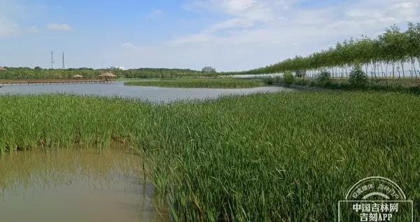 """查干湖:珲乌高速公路开通 吸引了越来越多省内外游客慕名前来""""打卡"""""""
