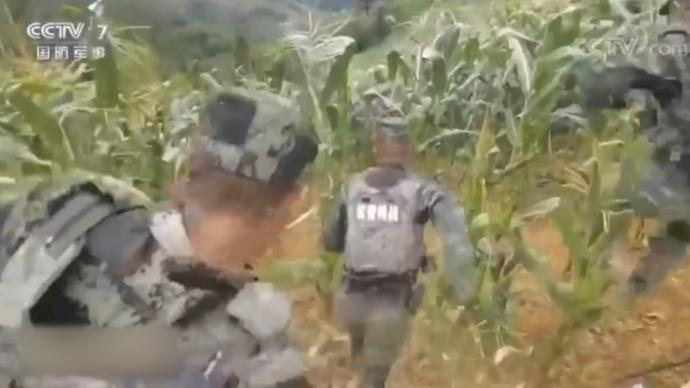 广西百色发生持刀杀人案件,武警官兵60小时山林追凶