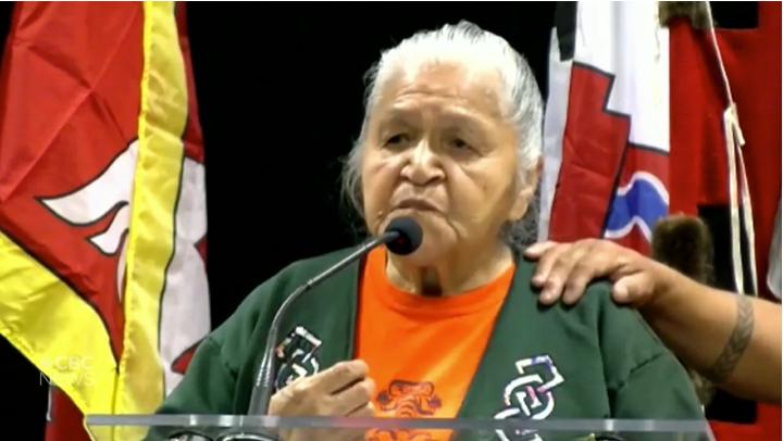 加拿大原住民幸存者自述经历