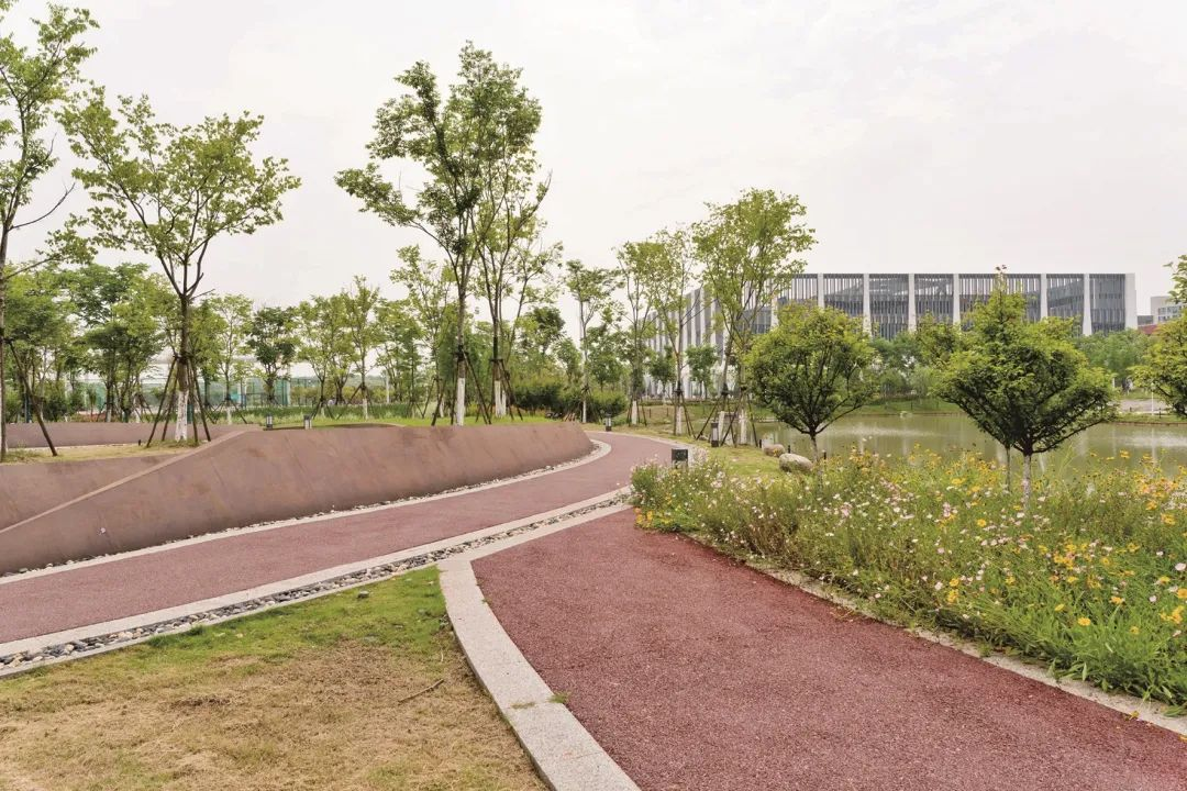 """中国地质大学(武汉)未来城校区融入""""海绵城市""""理念"""