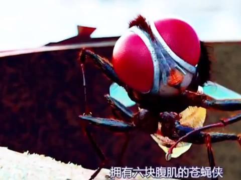 功夫小蝇2:变成苍蝇后在女主的帮助下升级装备和锻炼身体!