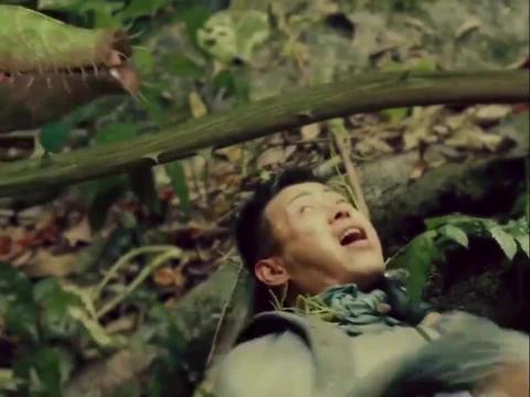 听说人类在食物链顶端?在丛林,就连草都会吃人!