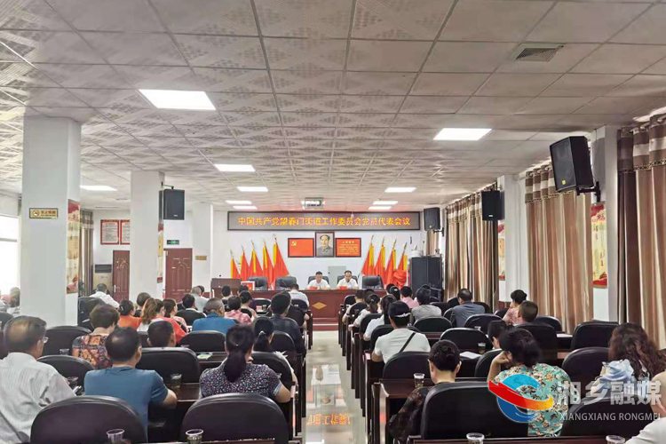 湘乡各乡镇街道党代表选举工作有序进行
