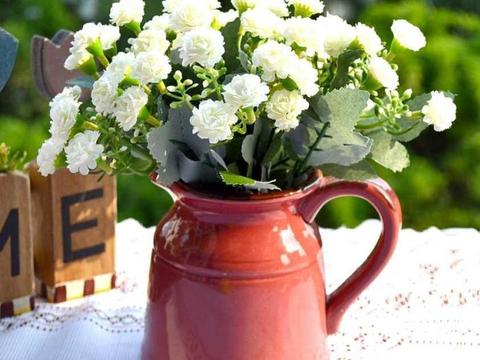 花小技巧:夏天养花注意小细节,不用担心病菌,花苞越长越多
