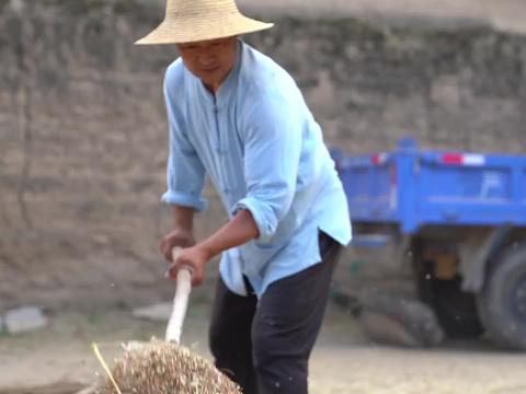 甘肃老家碾麦场,扬麦子可是一个技术活,母亲煮上一锅洋芋真过瘾