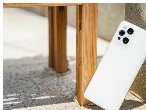 OPPO Find X3显微镜功能体验:能够摸到光学显微镜的