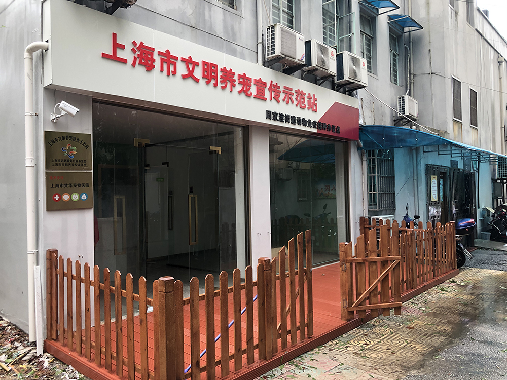 2021年7月26日,上海市首个文明养宠宣传示范站,提前开放并临时作为台风后流浪动物救助点。