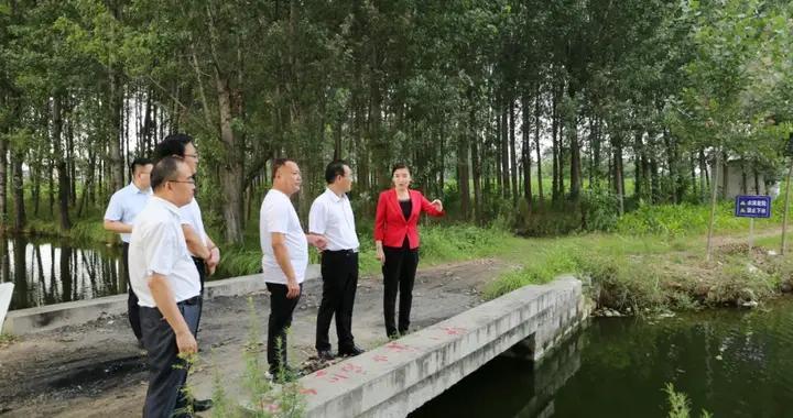 张宏伟到薛城区督导疫苗接种和防溺水工作