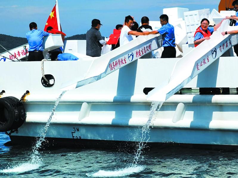 渔民非法捕捞鳀鱼被罚 350万尾黑头鱼苗回归大海