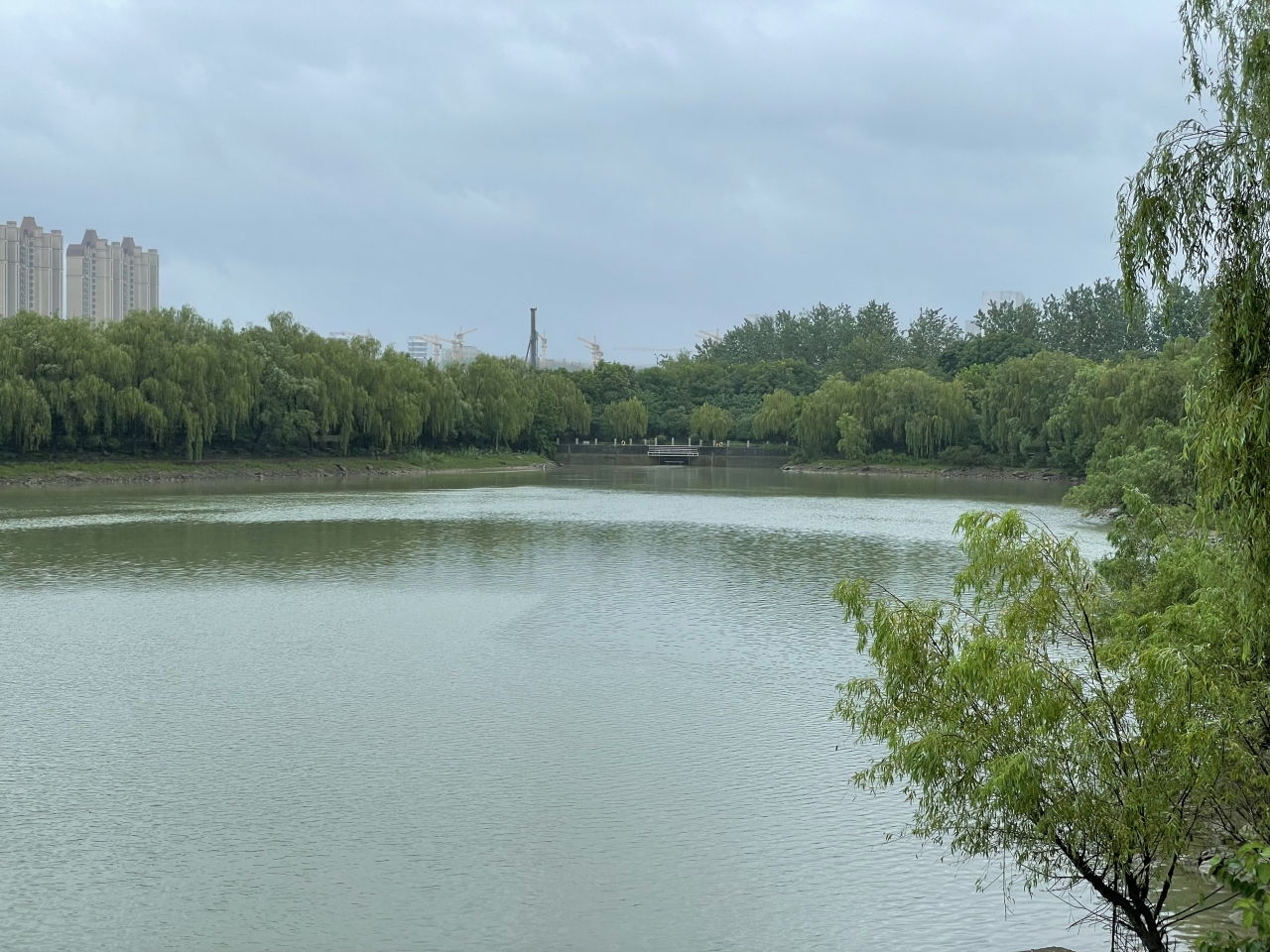 """记者直击丨大刀沙泵站""""首排"""" 留下的东穆坞溪水位2小时直降6厘米"""