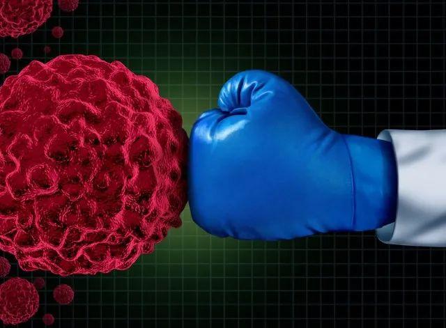 速递 | PD-1/TIGIT双特异性抗体步入临床,信达和礼来联合开发