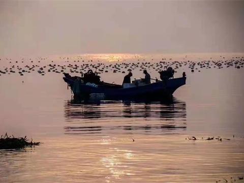 辽宁大连市小耗岛鑫波渔家院,上山打兔子下海捞鱼,赏绝美海景!