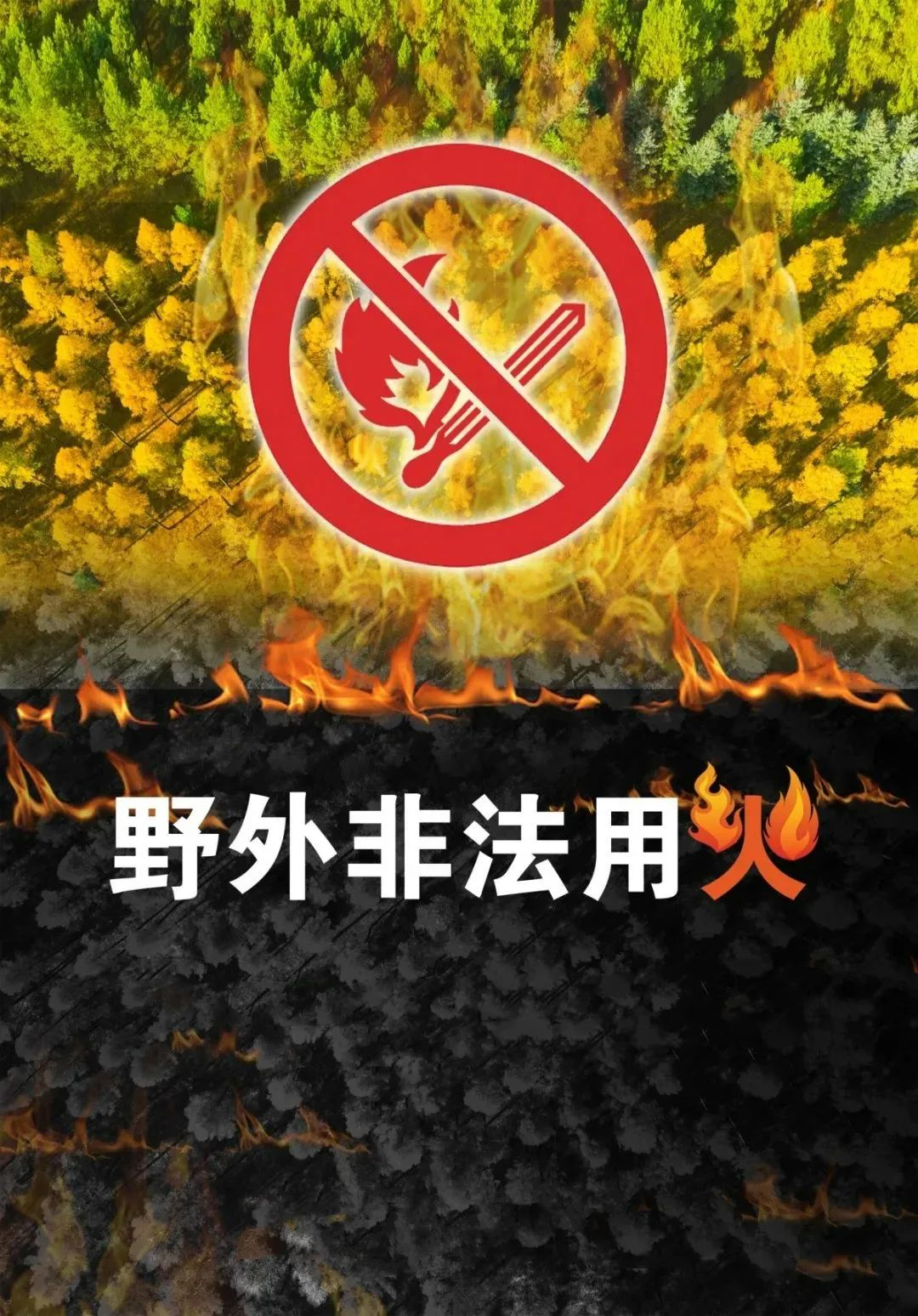 五台山普化寺庆祝建党100周年书画展精彩纷呈