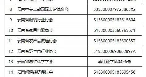 云南艺术馆等22家社会组织被列入严重违法失信名单