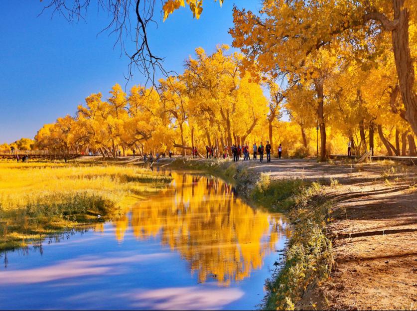 """5条旅游专列线路玩遍美丽中国 """"跟着晚报去旅行""""读者特惠团活动启动"""