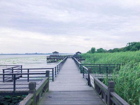 苏州阳澄湖旅行 本地人吃大闸蟹的地方