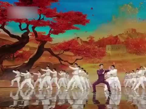 那些会武术的明星:赵文卓现场展示通背拳,王智居然会打咏春