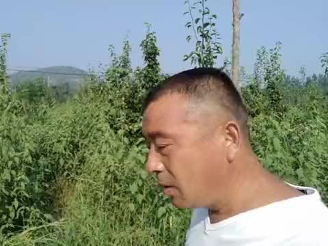 农民张哥想找合伙人