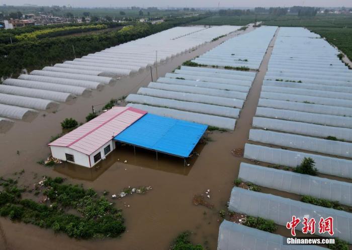 资料图:7月22日,安阳市西于曹村附近被淹的大棚。 中新社记者 邹浩 摄