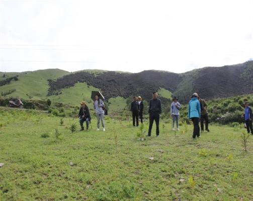 甘孜州1.79万亩新一轮退耕还林通过省级验收,涉及道孚、巴塘、理塘和稻城4县