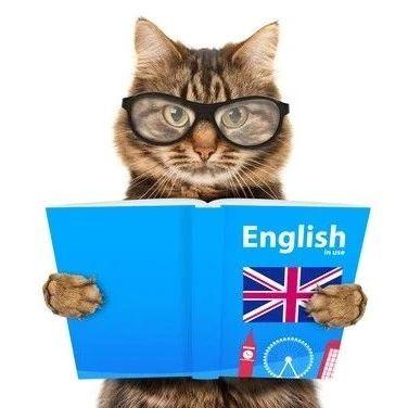 """留学故事   在英国,如何克服""""Culture Shock""""?"""