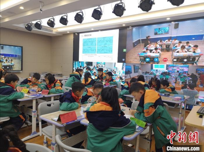 资料图:浙江一小学的课堂。 童笑雨 摄