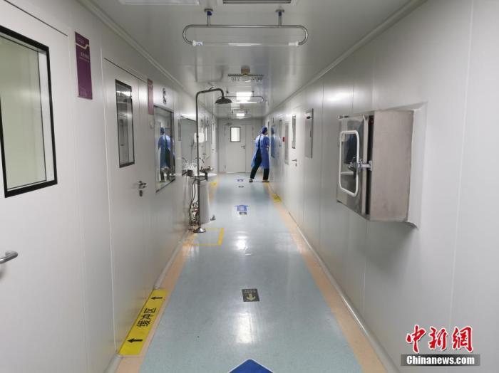 资料图:郑州人民医院核酸检测实验室内部的清洁区。 中新社记者 韩章云 摄