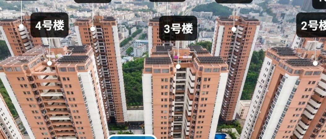 月租700元能住单身公寓!深圳放出大批公租房,这些人可申请