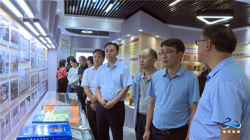 云南省彝良县来略阳考察中药材产业