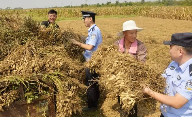 """枣庄流动的""""警察蓝""""守护百姓""""果盘子""""和""""米袋子"""""""