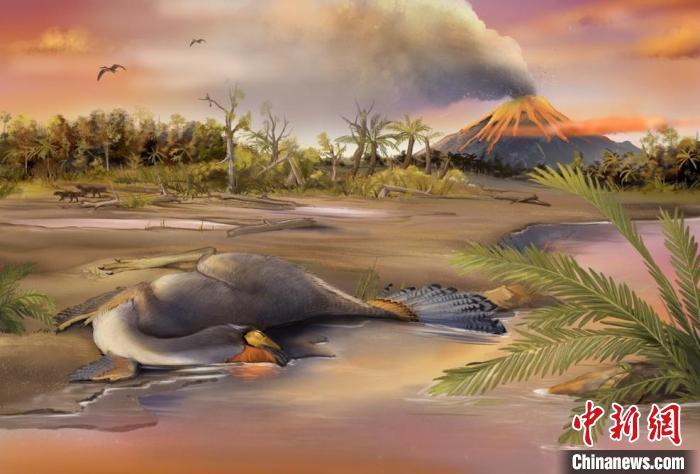 中国科研团队发现1.25亿年前恐龙软骨细胞,或存有机分子